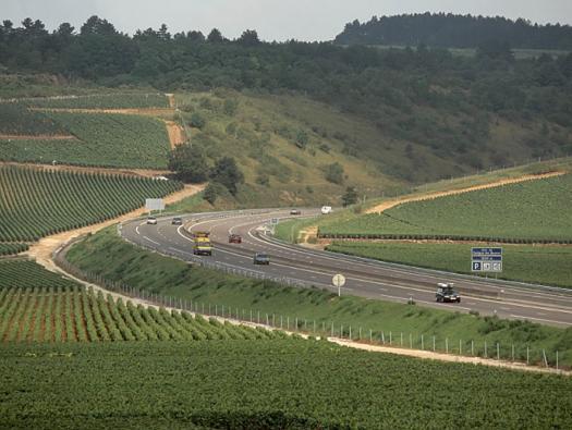 Crédit photographique : APRR/BENARD Eric // Circulation sur linéaire prés de Savigny-les-Beaune, au milieu des vignes.